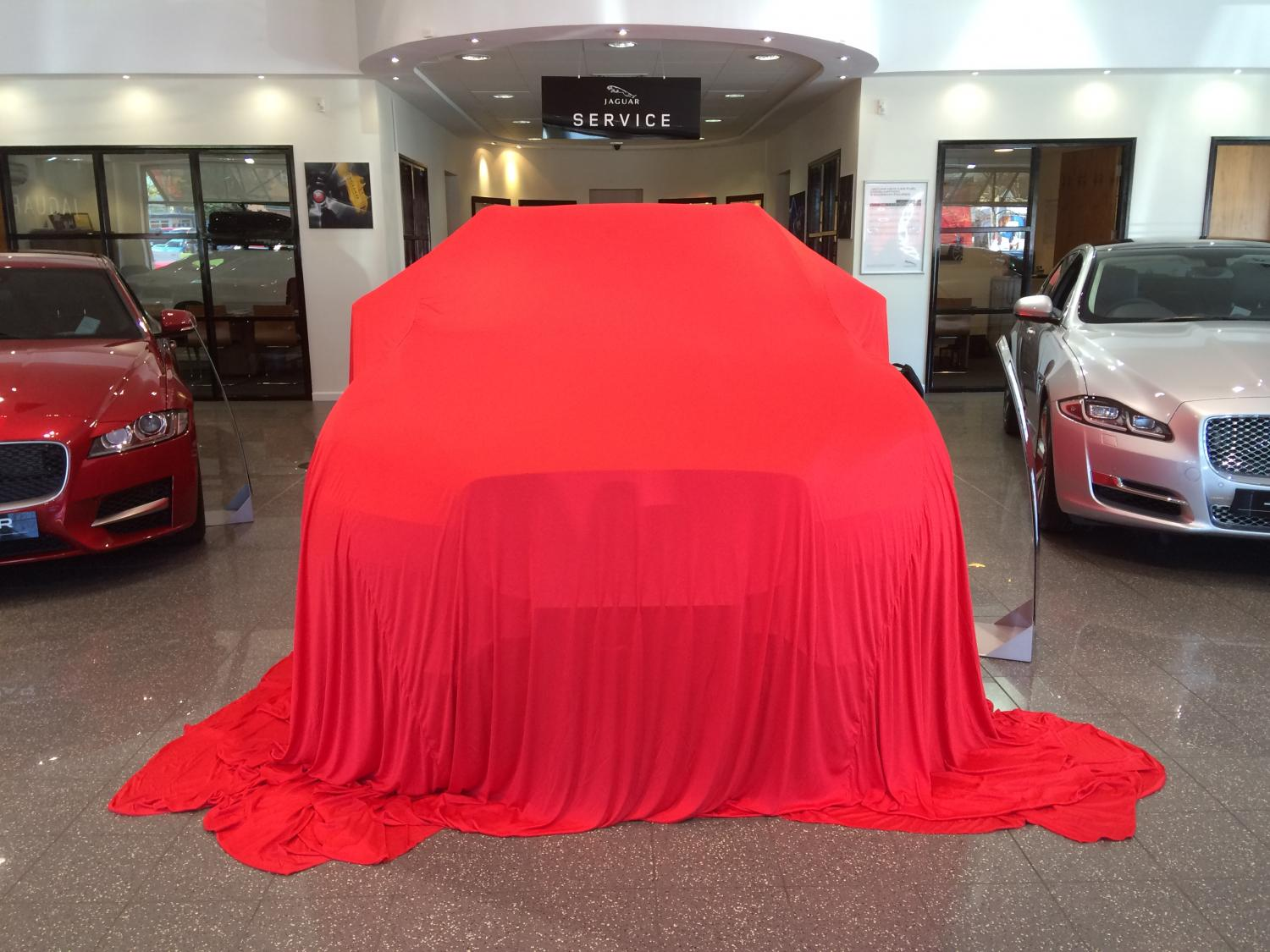 Zingy Reveal Launch Car Cover In Reveal Launch Car Covers - Show car cover